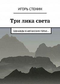 Игорь Стенин -Три лика света