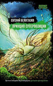 Евгений Белоглазов -Принцип суперпозиции