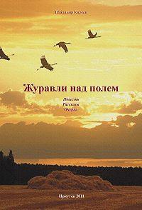 Владимир Киреев -Журавли над полем (сборник)