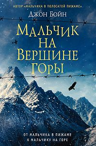 Джон Бойн -Мальчик на вершине горы