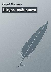 Андрей Платонов -Штурм лабиринта