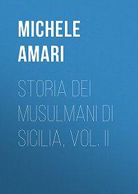 Michele Amari -Storia dei musulmani di Sicilia, vol. II