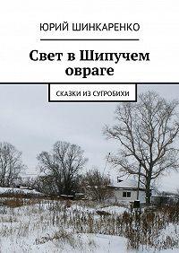 Юрий Шинкаренко -Свет в Шипучем овраге. Сказки из Сугробихи