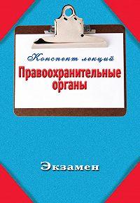 Павел Петров - Правоохранительные органы