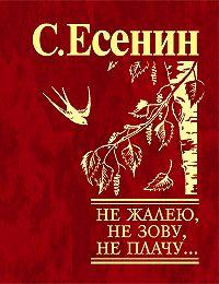 Сергей Есенин - Не жалею, не зову, не плачу…