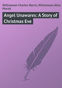 Alice Williamson -Angel Unawares: A Story of Christmas Eve