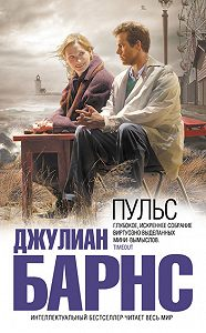 Джулиан Барнс - Пульс (сборник)