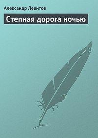Александр Левитов - Степная дорога ночью