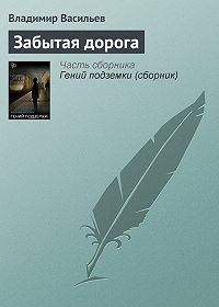 Владимир Николаевич Васильев -Забытая дорога