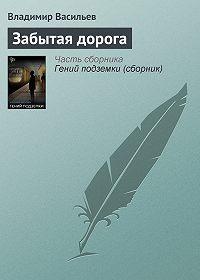 Владимир Васильев -Забытая дорога