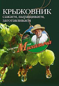 Николай Звонарев -Крыжовник. Сажаем, выращиваем, заготавливаем