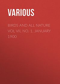 Various -Birds and All Nature Vol VII, No. 1, January 1900