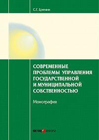 Сергей Еремин -Современные проблемы управления государственной и муниципальной собственностью