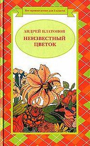 Андрей Платонов - Иван Бесталанный и Елена Премудрая