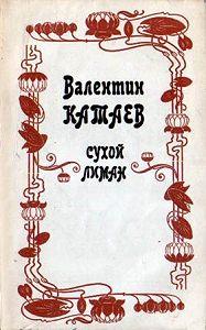 Валентин Катаев -Юношеский роман
