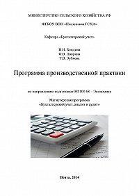 Татьяна Зубкова, Наталья Бондина, Ольга Лаврина - Программа производственной практики