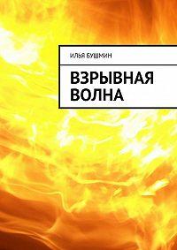 Илья Бушмин -Взрывная волна