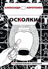 Александр Коротенко -Осколки. 12 удивительных ситуаций