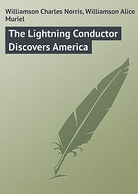 Alice Williamson -The Lightning Conductor Discovers America