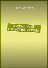 Сабир Саитгареев -Испуганный пушистый комочек