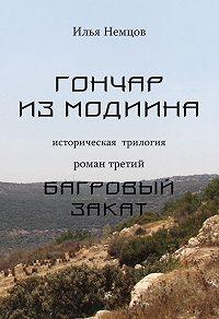 Илья Немцов - Багровый закат