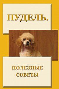 Илья Мельников -Пудель. Полезные советы