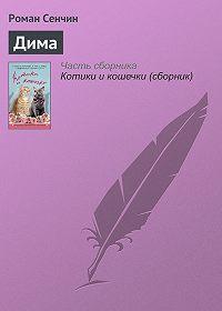 Роман Сенчин -Дима