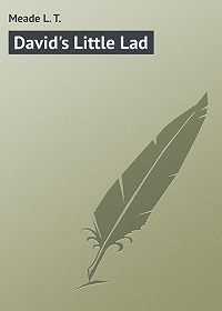 L. Meade -David's Little Lad