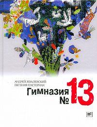 Андрей Жвалевский, Евгения Пастернак - Гимназия №13