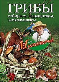 Николай Звонарев -Грибы. Собираем, выращиваем, заготавливаем