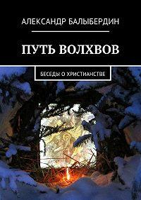 Александр Балыбердин -Путь волхвов. Беседы охристианстве