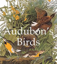 John James Audubon -Audubon's Birds