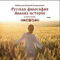 Небольсин Анатольевич -Русская философия. Анализ истории. Том 5