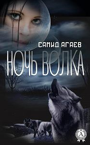 Самид Агаев - Ночь Волка