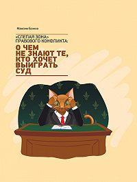 Максим Божко - «Слепая зона» правового конфликта: очем не знают те, кто хочет выиграть суд