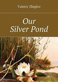 Valeriy Zhiglov -Our Silver Pond