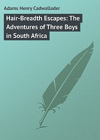Henry Adams -Hair-Breadth Escapes: The Adventures of Three Boys in South Africa