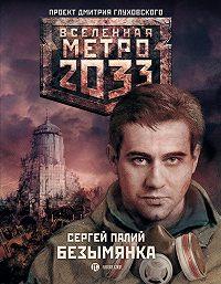 Сергей Палий -Безымянка