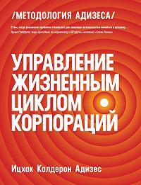Ицхак Адизес - Управление жизненным циклом корпораций