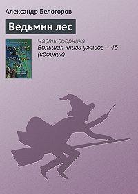 Александр Белогоров -Ведьмин лес