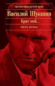 Василий Шукшин - Штрихи к портрету