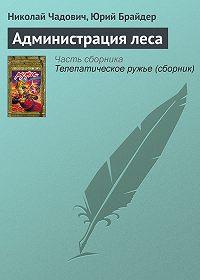 Николай Чадович -Администрация леса