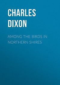 Charles Dixon -Among the Birds in Northern Shires