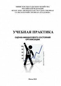 Наталья Зарук -Учебная практика. Оценка финансового состояния организации