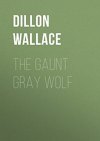 Dillon Wallace -The Gaunt Gray Wolf