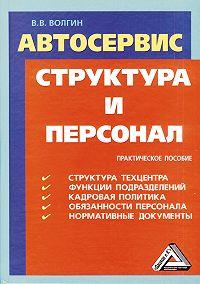 Владислав Волгин -Автосервис. Структура и персонал: Практическое пособие