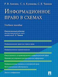 Роман Амелин, Светлана Куликова - Информационное право в схемах. Учебное пособие