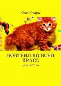 Олег Старк -Бобтейл вовсей красе. знакомство