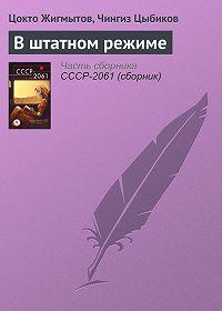 Цокто Жигмытов -В штатном режиме