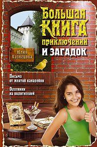 Юлия Кузнецова - Большая книга приключений и загадок